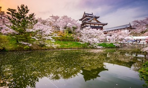 42239747 - nara, japan at koriyama castle in the spring season